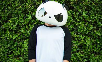 the white panda bearly legal songs