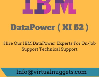 IBM Websphere DataPower Job Support
