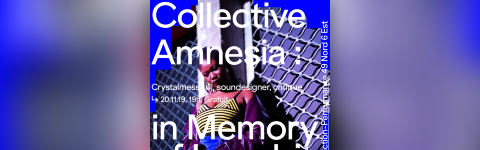 Crystallmess. Collective Amnesia : in Memory of Logobi.
